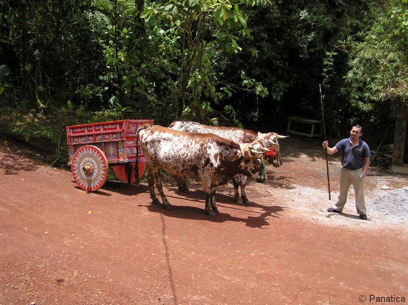 Kostarická klasika