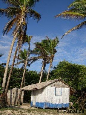 Little Corn Island